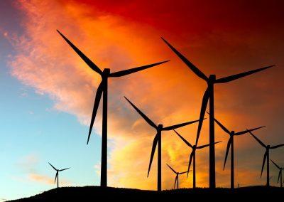 toora windfarm5